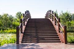 Asien Kina, Wuqing, Tianjin, grön expo, träbron Royaltyfri Foto