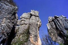Asien Kina Yunnan sten Forest World Geopark arkivfoto