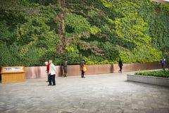 Asien kines, Peking, Kina trädgårds- museum, inomhus mässhall Arkivfoton