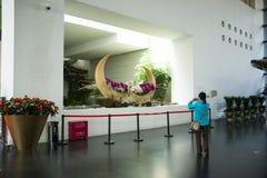 Asien kines, Peking, Kina trädgårds- museum, inomhus mässhall Arkivbilder