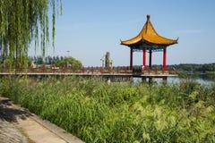 Asien kines, Peking, paviljong för Jianhe Parkï ¼ Œ, gröna vasser Arkivfoto