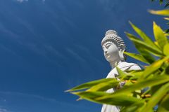 Asien-Kultur Lizenzfreies Stockfoto