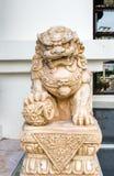 Asien lejon Fotografering för Bildbyråer