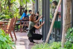 Asien personalkvinnor som förbi gör ren wipen per exponeringsglas Fotografering för Bildbyråer
