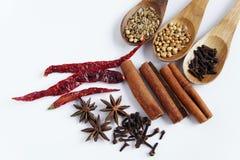 Asien recept & kryddigt Arkivfoto