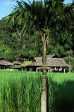 ASIEN THAILAND CHIANG MAI CHIANG DAO MINORITET Arkivfoton