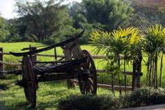 ASIEN THAILAND CHIANG MAI CHIANG DAO MINORITET Royaltyfri Bild