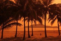 ASIEN THAILAND HUA HIN KHAO SAM ROI YOT Royaltyfri Foto