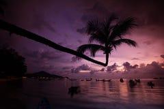ASIEN THAILAND KNOCK-OUT TAO Fotografering för Bildbyråer