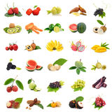 Asien tropiska frukter, samlingsfruktuppsättning på vit bakgrund Fotografering för Bildbyråer