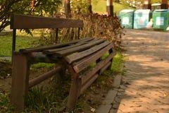 Asiento de madera, jardín, asiento, parque público, parque de naturaleza, jardín botánico Fotografía de archivo