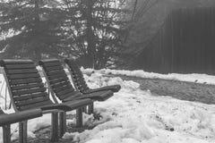Asiento en el invierno Fotografía de archivo