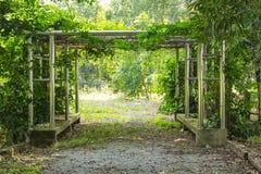 Asiento en el jardín. Imagen de archivo