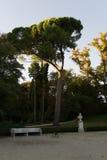 Asientos de la piedra y de la madera en el parque Imagen de archivo