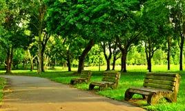 Asientos del parque, parque de Pasir Ris, Singapur fotografía de archivo libre de regalías