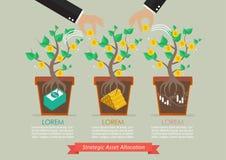 Asignación estratégica del activo infographic libre illustration