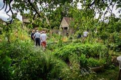 Asignación vegetal del pueblo inglés en Frome, Somerset, Reino Unido foto de archivo