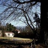 Asilo abbandonato incorniciato con gli alberi Fotografia Stock
