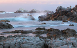Asilomar delstatsparkstrand, nära Monterey, Kalifornien, USA Royaltyfria Foton