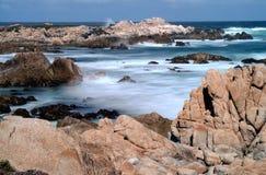 Asilomar för Tid schackningsperiod tillstånd Marine Reserve Arkivfoto