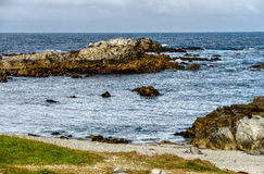 Asilomar State Marine Reserve Royalty Free Stock Photo
