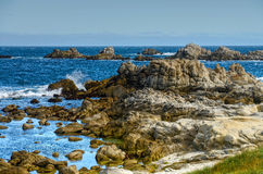 Asilomar State Marine Reserve Stock Photo