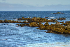 Asilomar State Marine Reserve Royalty Free Stock Photography
