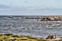Asilomar tillstånd Marine Reserve Arkivbild