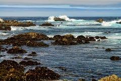 Asilomar tillstånd Marine Reserve Arkivfoto