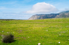 Asinara island in Sardinia, Italy Stock Photos