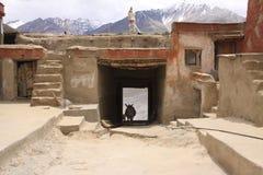 Asino e monastero Fotografia Stock Libera da Diritti