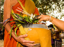 Ask for alms. Woman give alms to a Buddhist monk in the morning stock image