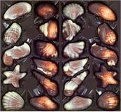 Ask av choklader Arkivbilder