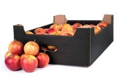 Ask av klart till Sale Jonagored äpplen som isoleras på vita Backgro Royaltyfria Bilder