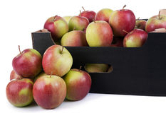 Ask av klart till Sale Ligol äpplen på vit bakgrund Royaltyfria Bilder