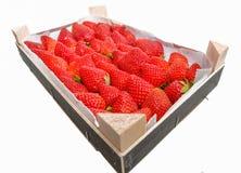 Ask av läckra jordgubbar Royaltyfri Foto