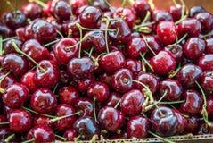 Ask av ljus röd körsbärnärbild royaltyfria foton