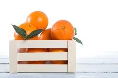 Ask av nya apelsiner Fotografering för Bildbyråer