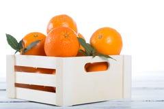 Ask av nya apelsiner Royaltyfri Bild
