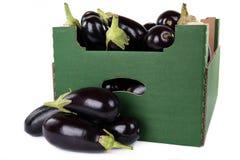 Ask av nya aubergine som är klara till försäljningen som isoleras på den vita backgrouen Royaltyfria Foton