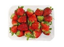 Ask av nya söta jordgubbar Royaltyfri Foto