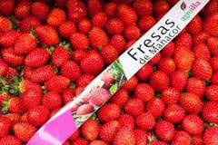 Ask av nytt skördade spanska jordgubbar från till salu Manacor Arkivfoto