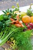 Ask av organiska frukt och grönsaker Royaltyfria Foton