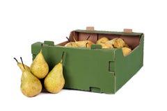 Ask av päron på vit bakgrund Royaltyfri Bild