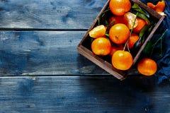 Ask av saftiga tangerin Royaltyfria Bilder