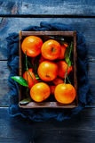 Ask av saftiga tangerin Royaltyfri Fotografi
