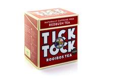 Ask av Tick Tock Rooibos Tea Bags arkivbilder