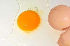 ask brutna fega äggägg inom yolk Royaltyfria Foton