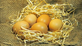 ask brutna fega äggägg inom yolk Arkivbild