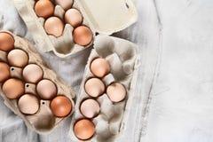 ask brutna fega äggägg inom yolk Top beskådar arkivbilder